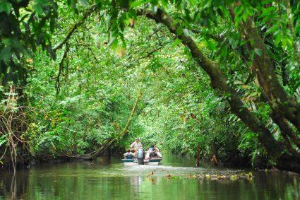 4 parcs nationaux à voir absolument lors d'un séjour au Costa Rica